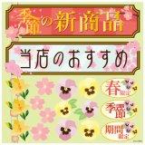 【季節の新商品(6809)】デコレーションシール