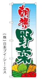 SALE限定品【朝穫り野菜】特価のぼり旗