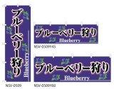 【ブルーベリー狩り】特価のぼり旗・横幕