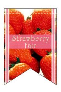 【Strawberry Fair】ミニタペストリー