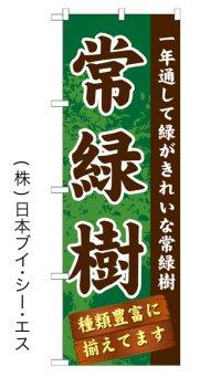 【常緑樹】のぼり旗