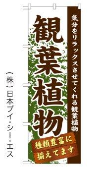 【観葉植物】のぼり旗