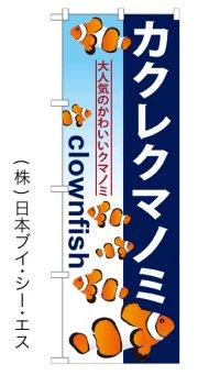 【カクレクマノミ】のぼり旗