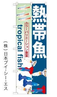 【熱帯魚】のぼり旗