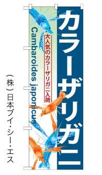 【カラーザリガニ】のぼり旗