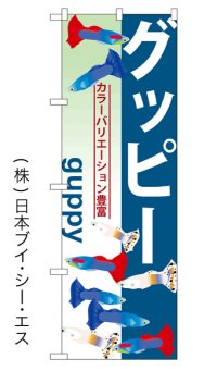 【グッピー】のぼり旗