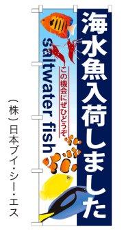 【海水魚入荷しました】のぼり旗