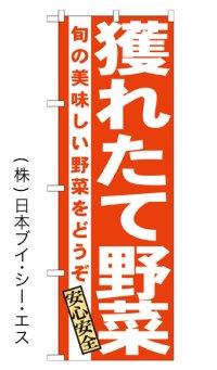 SALE限定品【獲れたて野菜】特価のぼり旗