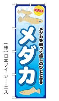 【メダカ】のぼり旗