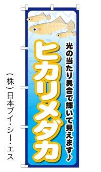 【ヒカリメダカ】のぼり旗