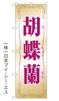 【胡蝶蘭】特価のぼり旗
