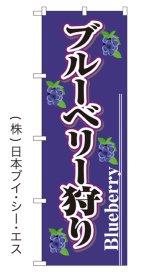 【ブルーベリー狩り】特価のぼり旗