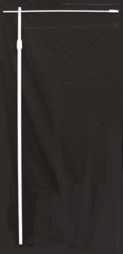 画像1: 【本日お魚特売日】中のぼり旗