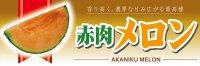 【赤肉メロン】パネル(受注生産品)