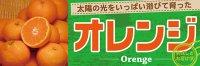 【オレンジ】パネル(受注生産品)