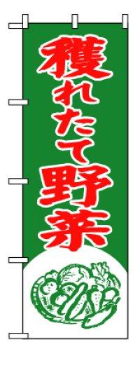 【穫れたて野菜】のぼり旗