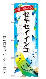 【セキセイインコ】特価のぼり旗