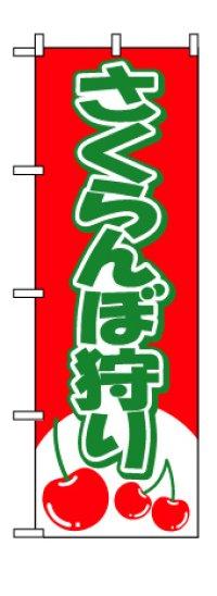 人気商品【さくらんぼ狩り】のぼり旗(サイズ:W600×H1800mm)【28N2230】【果物編】幟旗【生地:ポリエステル製(テトロンポンジ)】