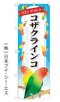 【コザクラインコ】特価のぼり旗